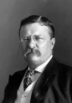 nason Roosevelt.jpg